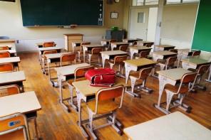 Gli insegnanti ed il ruolo del settore pubblico