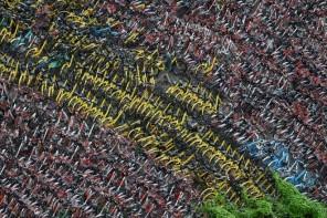 Bike Sharing mania