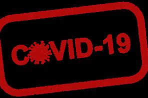 Un bilancio a freddo della diffusione di COVID-19 in Italia